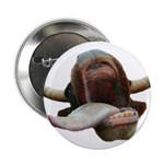 """Cow Tongue 2.25"""" Button (10 pack)"""