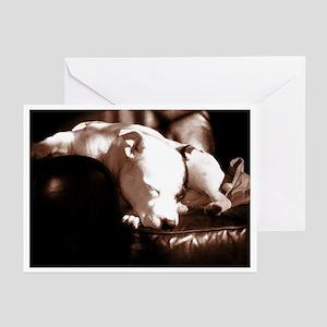 Staffordshire Bull Terrier Grtg Cards (Pk of 10)