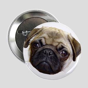 """Got Pug 2.25"""" Button"""