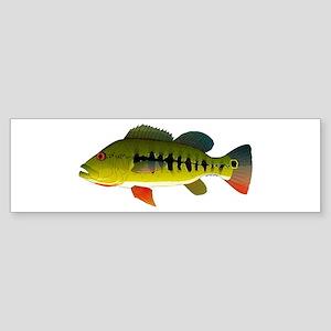 Royal Peacock Bass Bumper Sticker