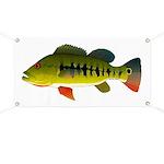 Royal Peacock Bass Banner