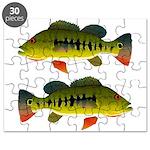 Royal Peacock Bass Puzzle