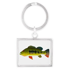 Royal Peacock Bass Keychains