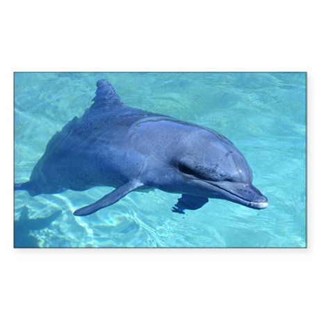 Serenity Dolphin Rectangle Sticker