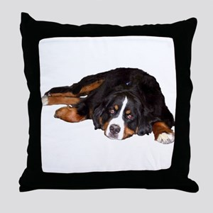 Bernese Mountain Dog - Throw Pillow