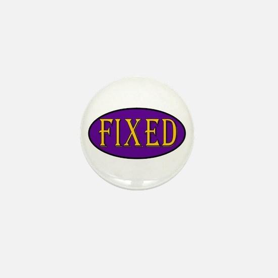 Fixed Mini Button