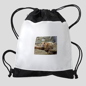 Spotted Hyena Drawstring Bag