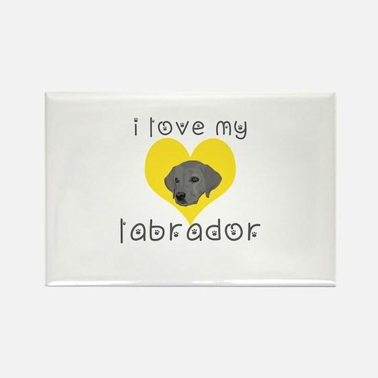 i love my labrador Magnets