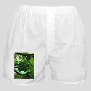 Hang in There! Boxer Shorts