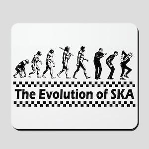 Evolution of SKA Mousepad