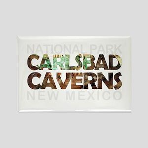 Carlsbad Caverns - New Mexico Magnets