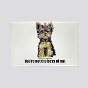 Yorkshire Terrier - Yorkie Bo Rectangle Magnet