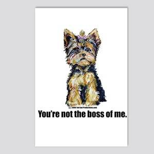 Yorkshire Terrier - Yorkie Bo Postcards (Package o