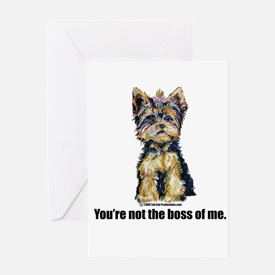 Yorkshire Terrier - Yorkie Bo Greeting Card