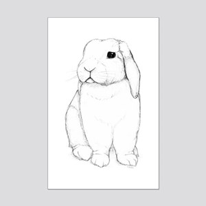 08d8d172575 Holland Lop Rabbit Posters - CafePress