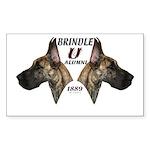 Dagmar's Brindle University Rectangle Sticker