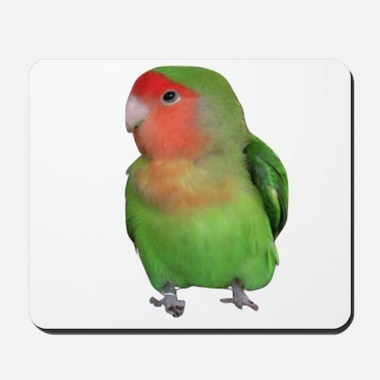 Peach-faced Lovebird Mousepad