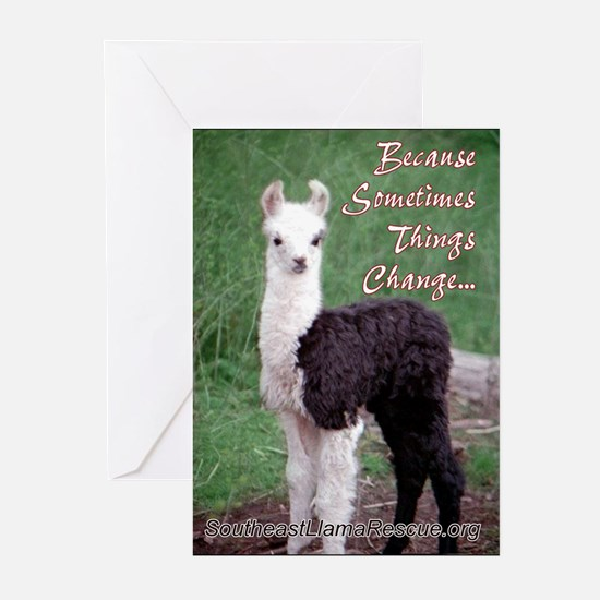 SELR Llama Greeting Cards (Pk of 10)