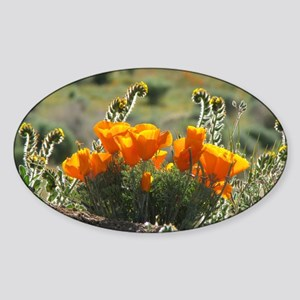 Helaine's Glowing Poppies Oval Sticker
