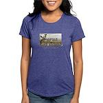 castlemountains Womens Tri-blend T-Shirt