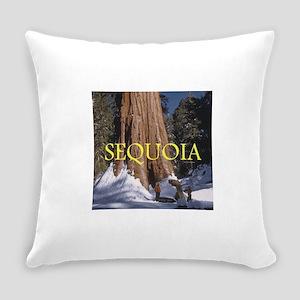 ABH Sequioa Everyday Pillow