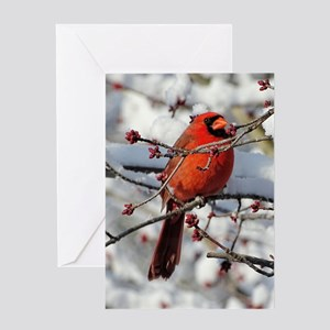 Red Bud Cardinal Greeting Cards