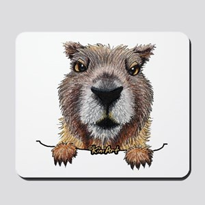 Yellow-bellied Marmot Mousepad