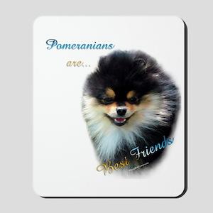 Pomeranian Best Friend 1 Mousepad