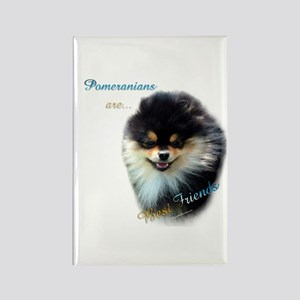Pomeranian Best Friend 1 Rectangle Magnet