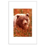 Grizzly Bear Cub in Fireweed Large Poster