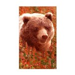 Grizzly Bear Cub in Fire Sticker (Rectangle 50 pk)