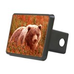 Grizzly Bear Cub in Firewe Rectangular Hitch Cover