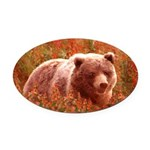 Grizzly Bear Cub in Fireweed Oval Car Magnet