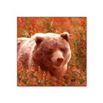 Grizzly Bear Cub in Firewee Square Sticker 3