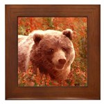 Grizzly Bear Cub in Fireweed Framed Tile