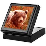 Grizzly Bear Cub in Fireweed Keepsake Box