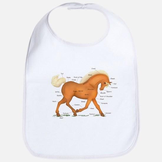 Gold Palomino Horse Anatomy Chart Bib