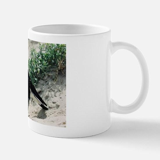 Australian Magpie on Beach Mug