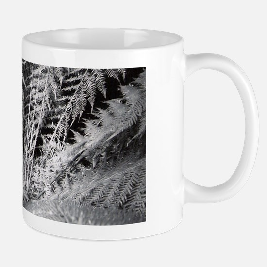Silver Fern in the Otways Mug