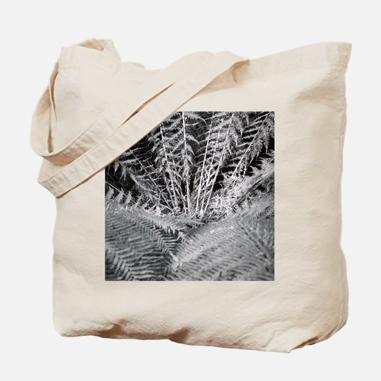 Silver Fern in the Otways Tote Bag