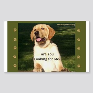 Looking for Me Lab Rectangle Sticker