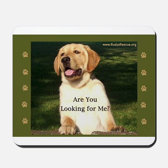 Looking for Me Lab Mousepad