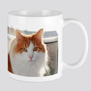 norwegian forest cat orange white Mugs