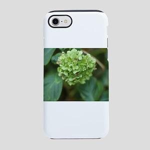 green hydrangea in garde iPhone 8/7 Tough Case