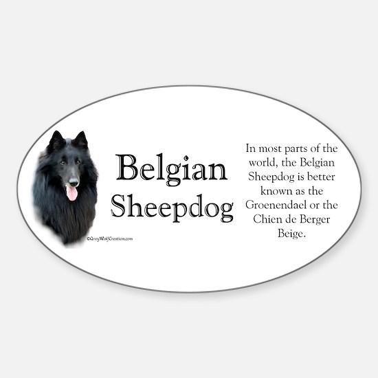 Belgian Sheep Profile Oval Decal