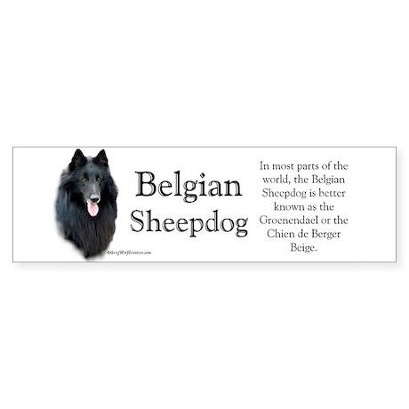 Belgian Sheep Profile Bumper Sticker