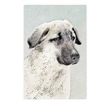 Anatolian Shepherd Postcards (Package of 8)