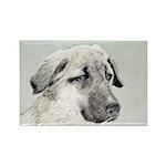 Anatolian Shepherd Rectangle Magnet (10 pack)