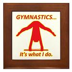 Gymnastics Framed Tile - Do