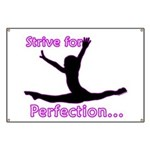 Gymnastics Banner - Perfection